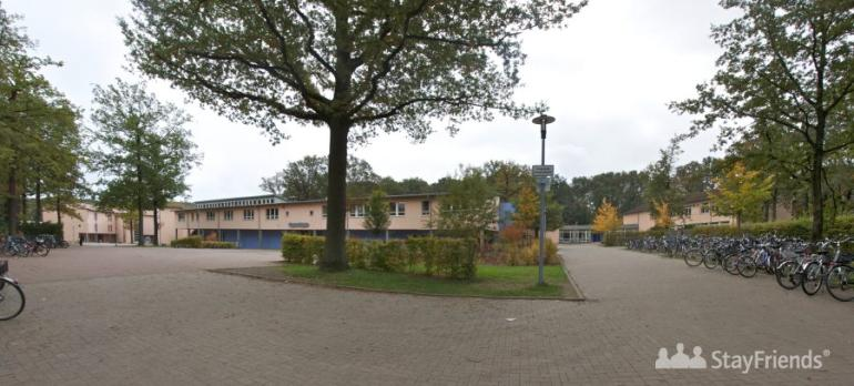 Birger Forell Realschule